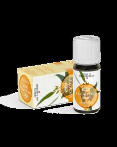 E111 - Eukalyptus  Öl 10 ml